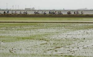 arroceando arroz en ruta